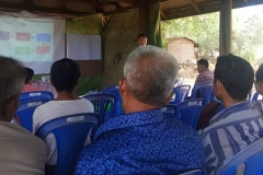 Federal Htanaung Daing (8)