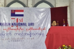 Kayin National Day (2)