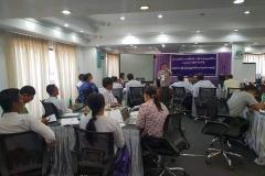 Yangon region land policy (5)